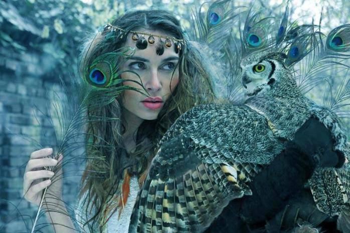 voyage chamanique animal totem